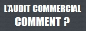 Audit Commercial Entreprise