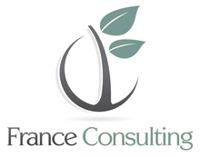 FRANCE CONSULTING